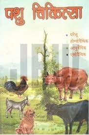 पशु चिकित्सक व नगरनिगम की लापरवाही से गई गाय की जान ।