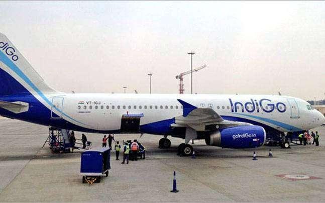 आपातकालीन लैंडिंगः 180 यात्रियों को ले जा रहे विमान से पक्षी टकराया