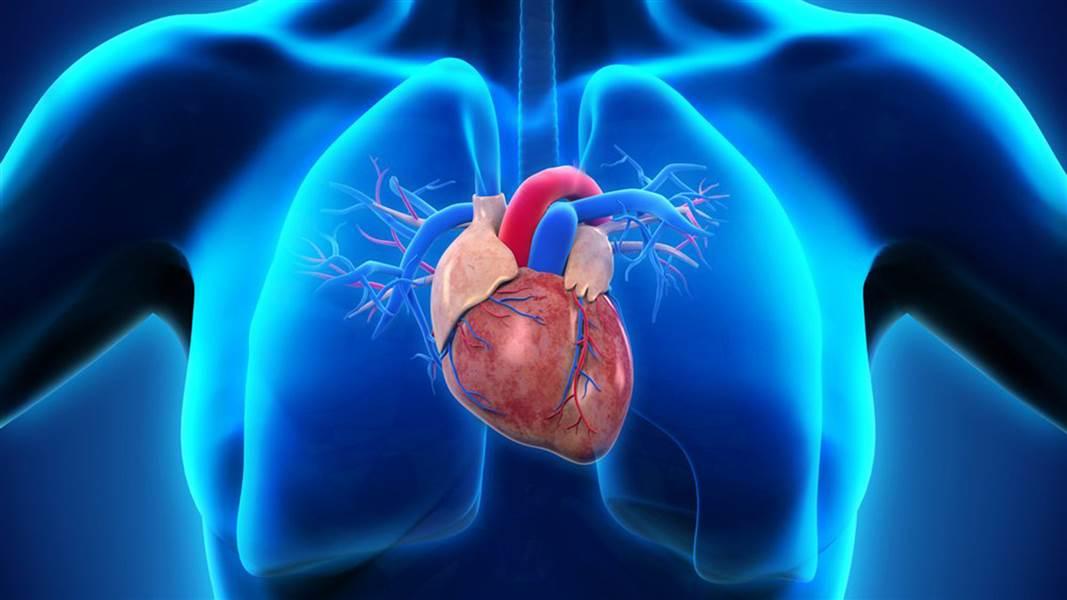 भोजन के बाद गर्म पानी पीने के बारे में ही नहीं HEART ATTACK के बारे में भी एक अच्छा लेख है।