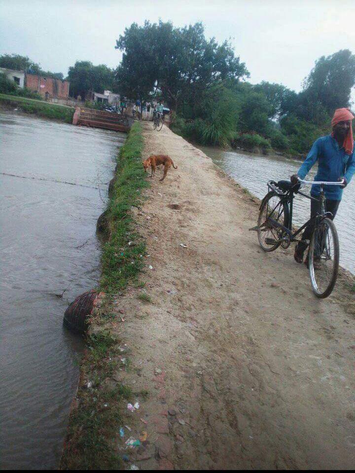 जान जोखिम मे डाल पुल पार करते है ग्रामीण