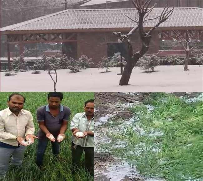 मौसम ने ली करवट, देश के कई हिस्सों में बारिश का कहर, फसल को नुकसान