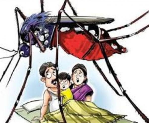 बहराइच में नौ मरीज डेंगू बुखार की चपेट में आए ,मौसम के बदले तेवर
