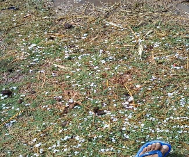 उप्र में बारिश के साथ ओलावृष्टि में बिजली गिरने से पांच की मौत, फसलें प्रभावित