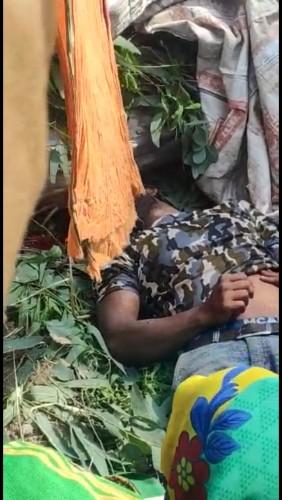 मोहनलालगंज कोतवाली क्षेत्र में पेड़ के नीचे दबकर युवक की मौत