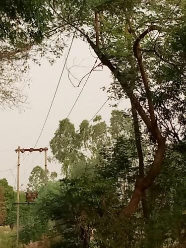 आग लगने का कारण हैं ढीले तार, बिजली विभाग की लापरवाही