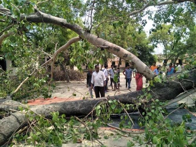 जिला जौनपुर में कालेज में पीपल का पेड़ गिरा, अध्यापक व छह छात्र घायल, एक की मौत