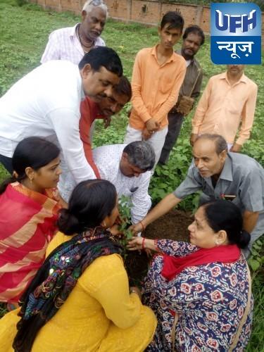 वृक्षारोपण महाकुंभ के अवसर पर स्थित शिशु ज्ञान मंदिर इंटर कॉलेज पर किया गया वृक्षारोपण