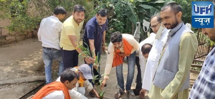 महोबा-सेवा सप्ताह के तहत भाजपाईयों ने किया वृक्षारोपण