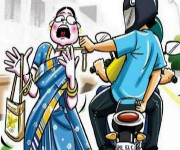बदमाशों ने महिला का पर्स लूटा