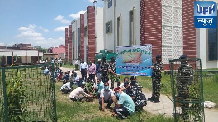 सृजन संग 95 बटालियन केंद्रीय रिजर्व पुलिस बल ने किया पौधरोपण
