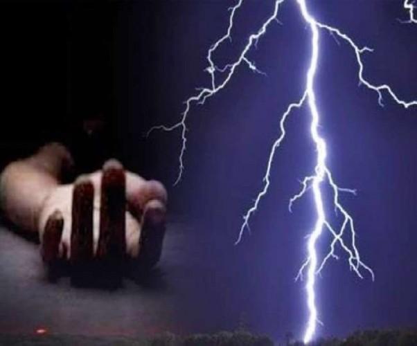 यूपी में पेड़ और घर गिरने से 35 लोगों की मौत